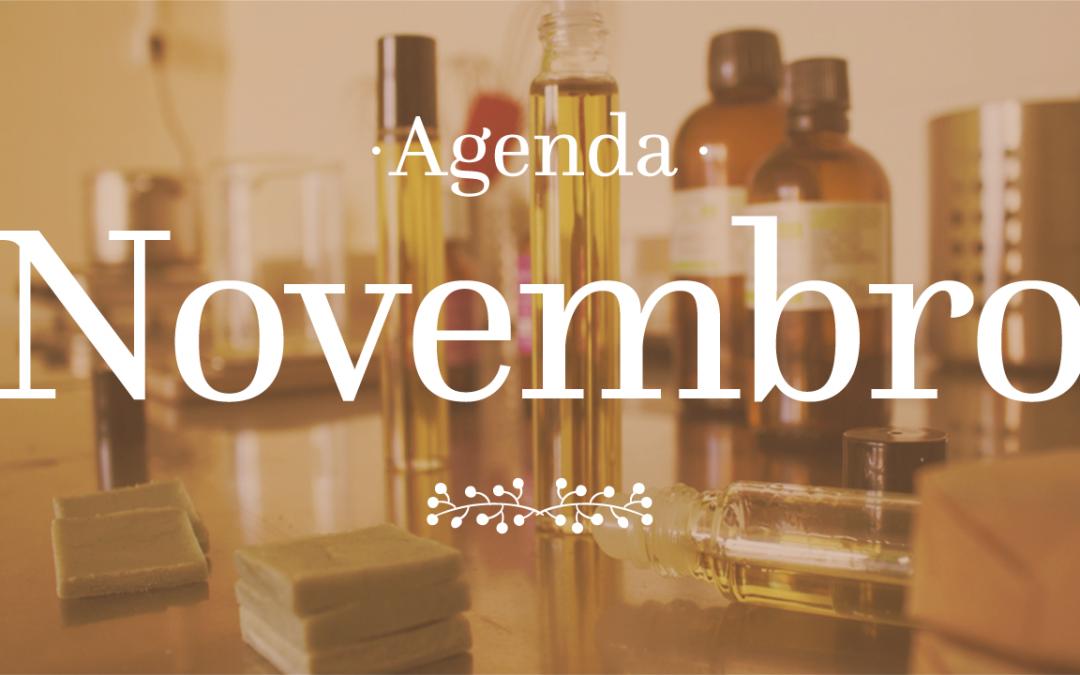 Novembro, Prendas de Natal Ecológicas e DIY