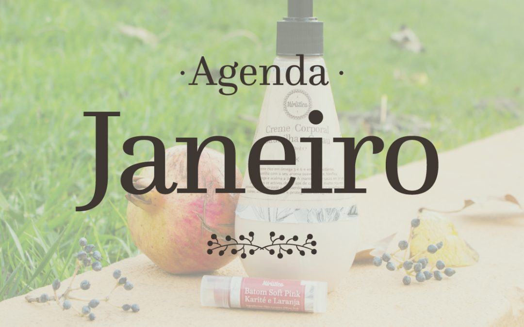 Janeiro: Desafios, compras conscientes e descontos