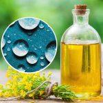 Glicerina Vegetal 99% Biológica e Palm Free