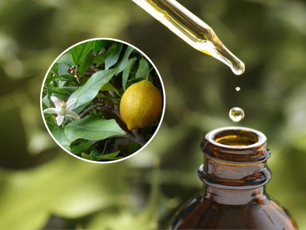 Óleo Essencial de Limão Biológico